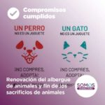 Renovación del albergue de animales y fin de los sacrificios de animales